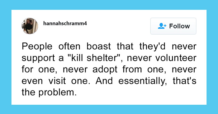 This Girl Explained The Difference Between A 'Kill' And 'No-Kill' Animal Shelter And It's Eye-Opening