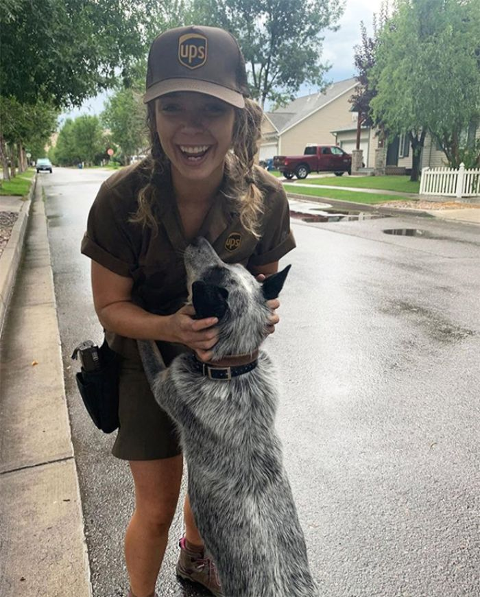 UPS-Drivers-Meets-Animals-Dogs