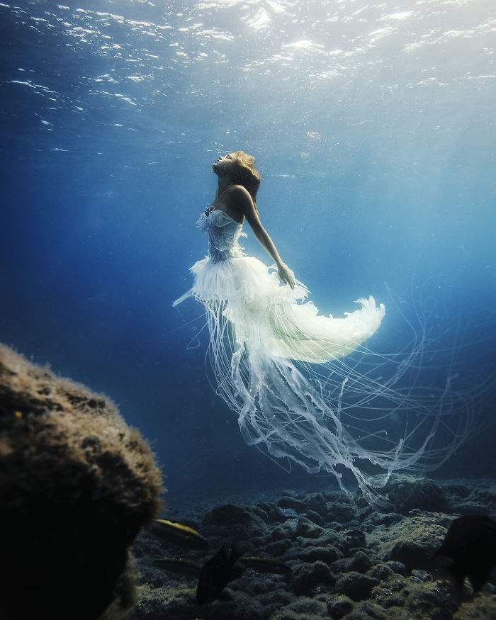 Human Jellyfish