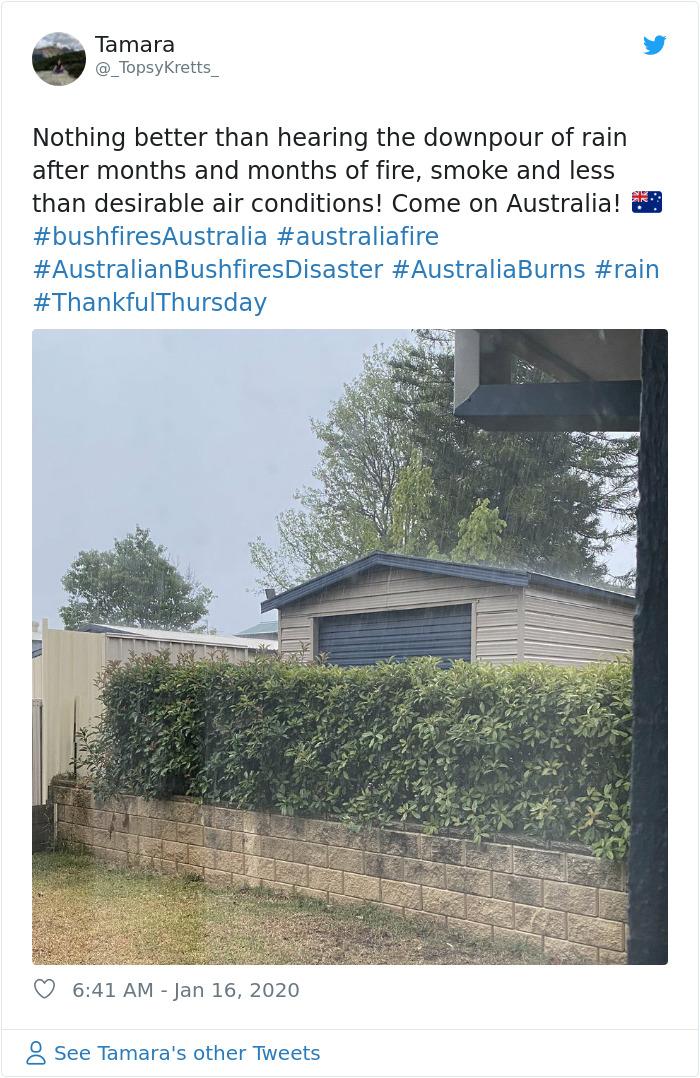 1217698456543715328 png  700 - Finalmente chove forte na Austrália, apagando mais de 30 incêndios mortais
