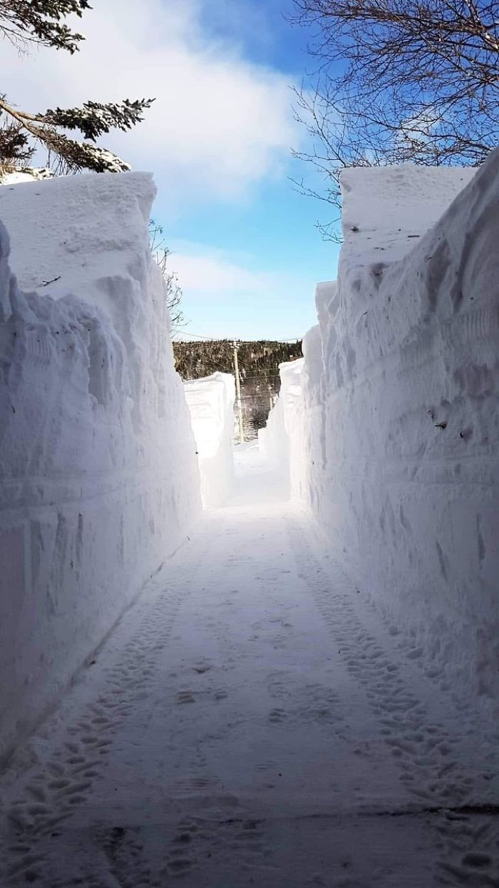 What A Cool Driveway In Newfoundland