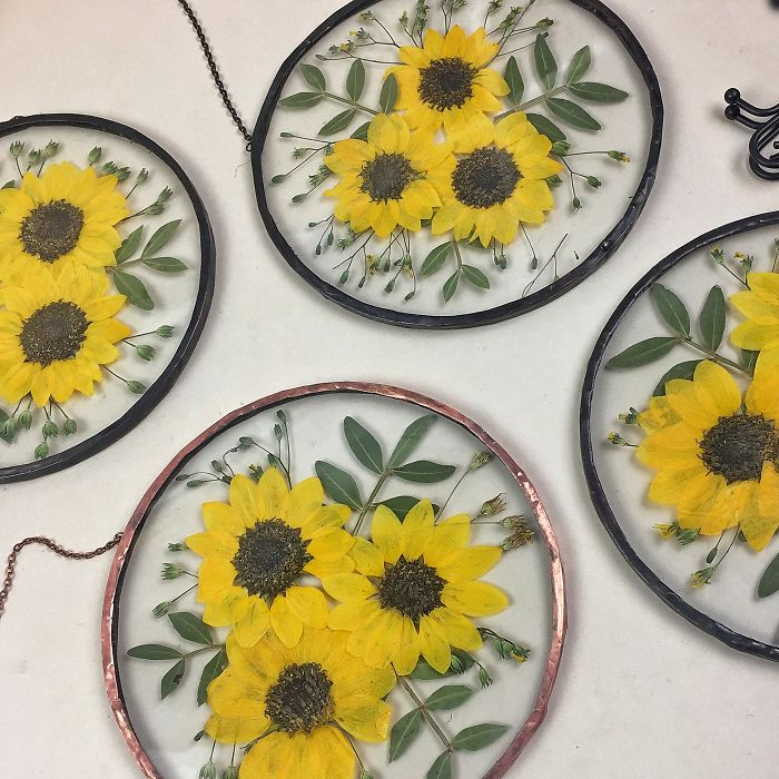About Two Years Ago, I Picked Up A New Hobby Of Making Flower Herbariums And Here Are My Recent Works