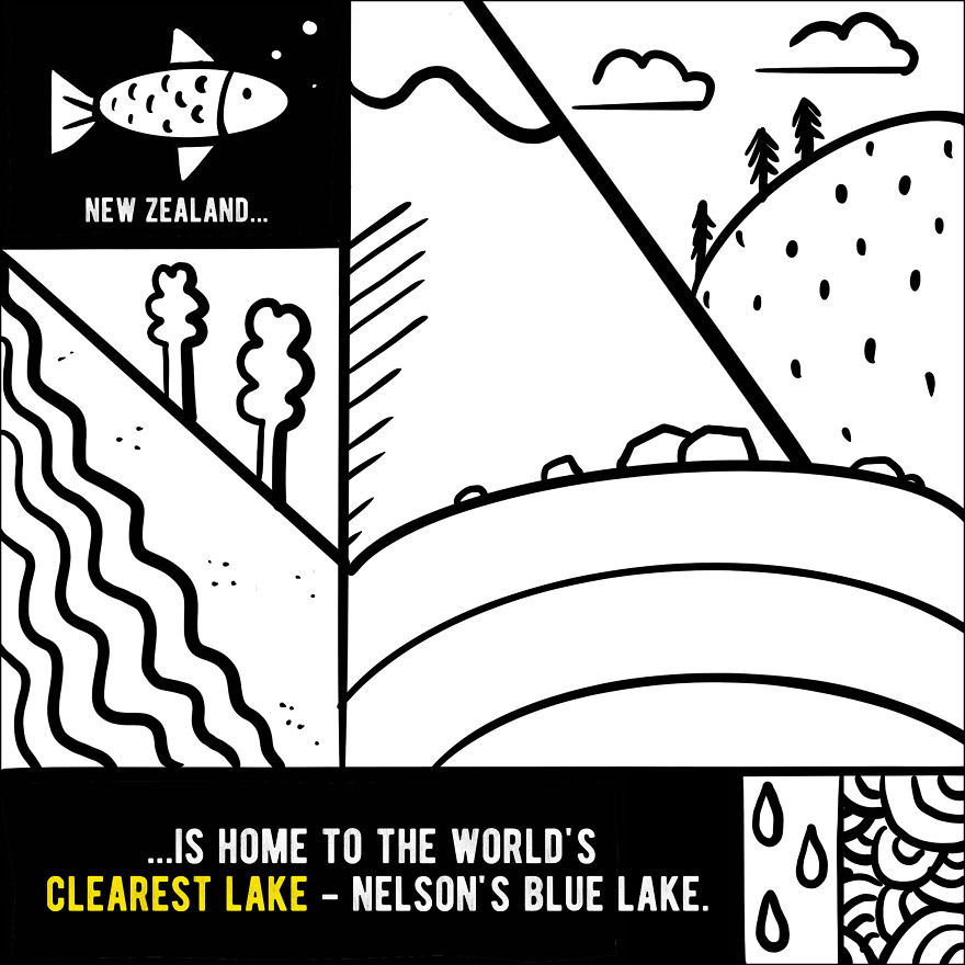 We Illustrated 20 Interesting Facts About New Zealand That You Probably Didn't Know