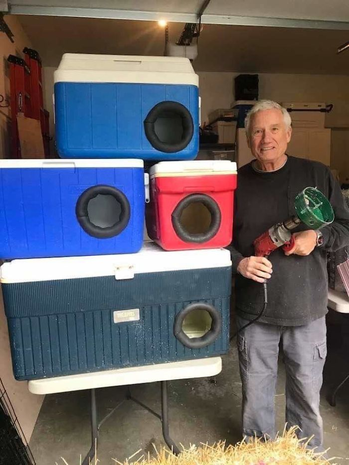 This Man Is Recycling Old Picnic Coolers Into Shelters For Stray Cats For Winter. How Cool Is This?