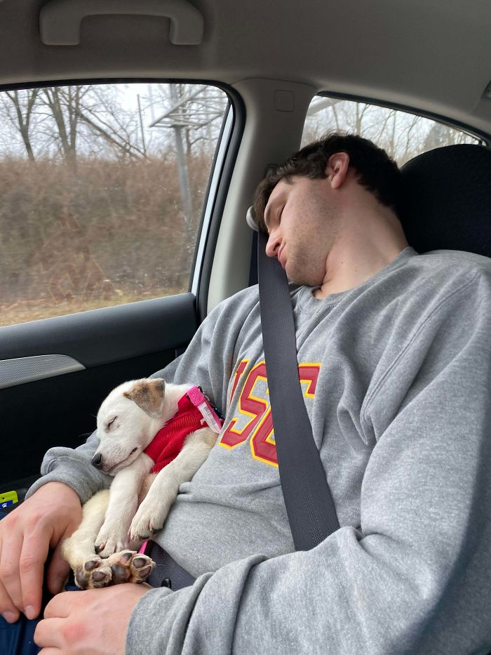 On Our Way Home From Adopting Her. Like Father Like Daughter.