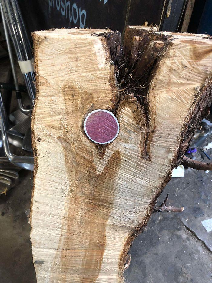 Pelota de golf dentro de un tronco