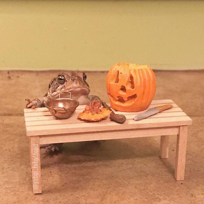 Happy Octoby Time To Carve Pormpkins