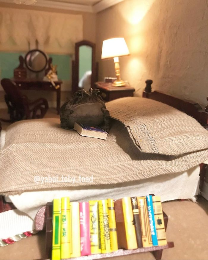 I Am Smort, I Read Books Frens