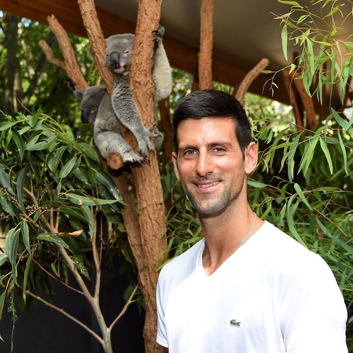 Tennis Player Novak Djokovic Matched Sharapova's $17k Donation
