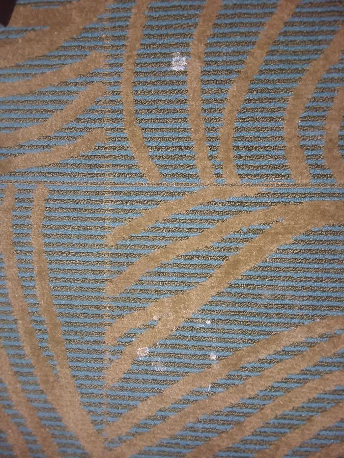 A little splatter on the carpet right next to a bed in Henderson