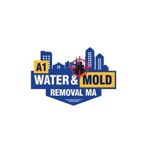 A1 Water and Mold Removal MA
