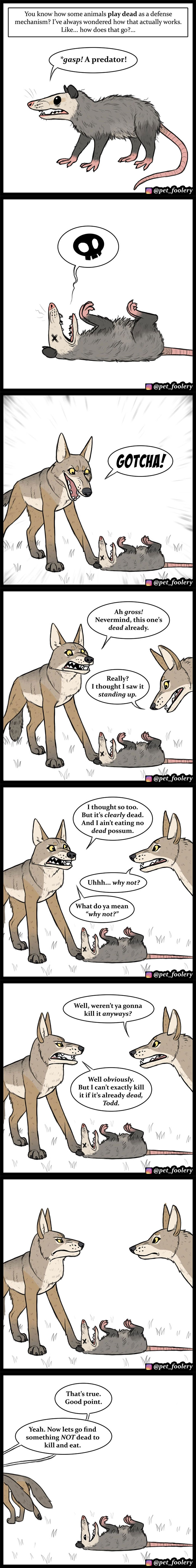 Animal-Comics-Pet-Foolery