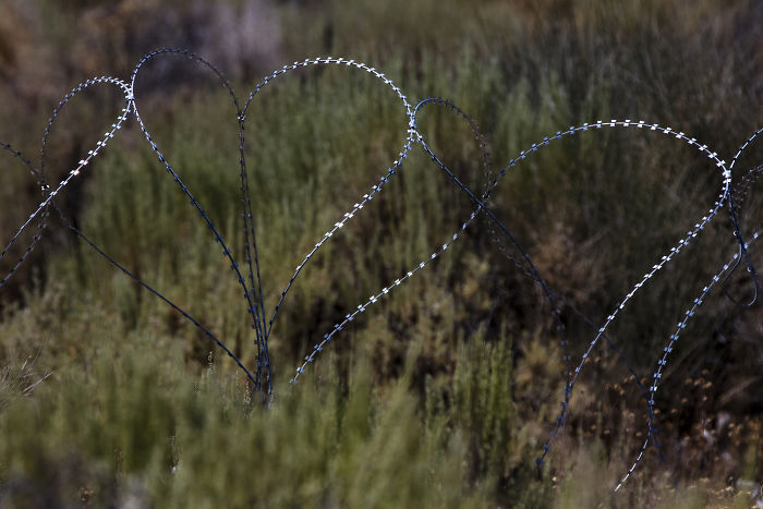 Barbed Wire At One Of The Back Entrances To Area 51