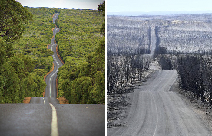 19 Then And Now Photos Of Australia Show How Much Damage The Fires Have Already Done