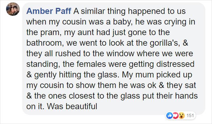 Breastfeeding Mom S Emotional Encounter With Orangutan At The