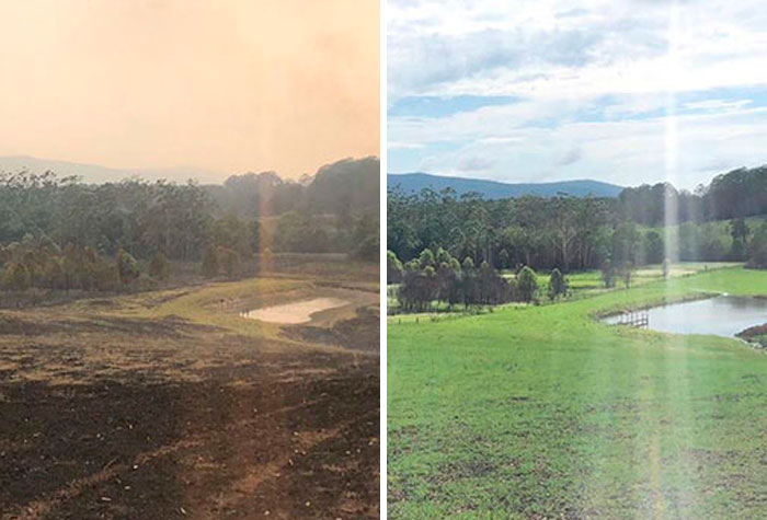 Russell Crowe Shares Before And After Pics Of His Fire Devastated Land After A Weekend Of Rain
