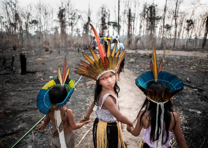I Traveled To Burning Amazon Forest And Had My Very First Ayahuasca Ceremony