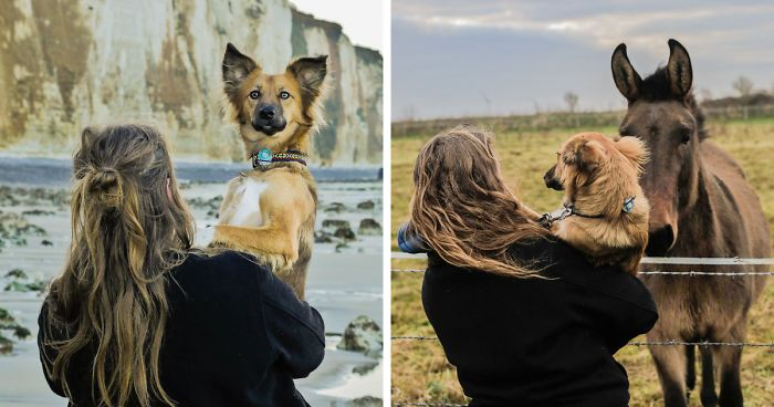 42 Of My Outdoor Adventures With My Adopted Dog Who Is Often Too Scared To Walk