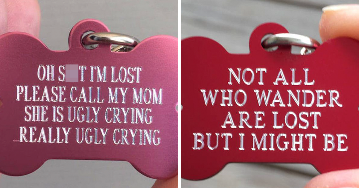 You Can Get These Funny Tags For Your Dogs In Case They Get Lost