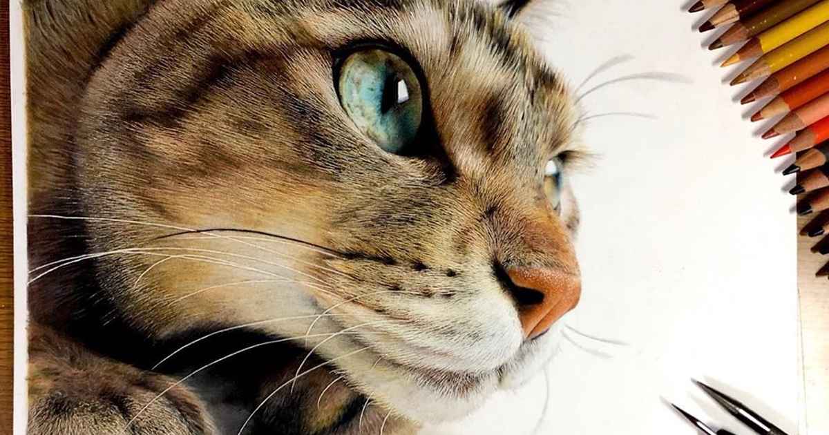 23 Hyper Realistic Artworks Of Cats That Are Hard To Believe Aren T Photographs By A Japanese Artist Bored Panda