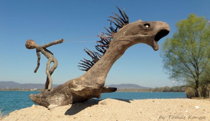 The Reincarnation Of Driftwood