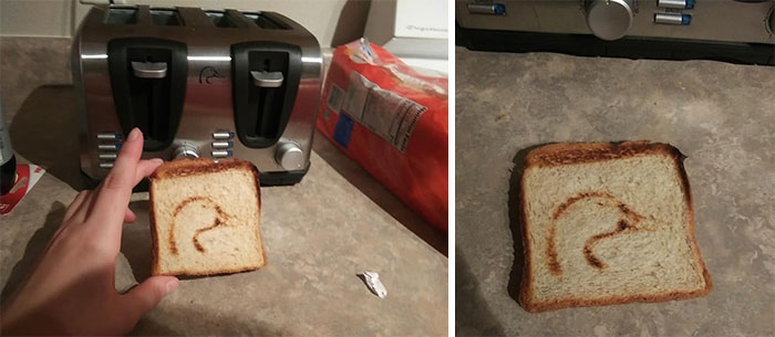My BF And I Went To A Thrift Store To Get A Toaster For Our New Apartment, Didn't Realise The Toaster Made A Duck Until I Went To Toast Some Bread