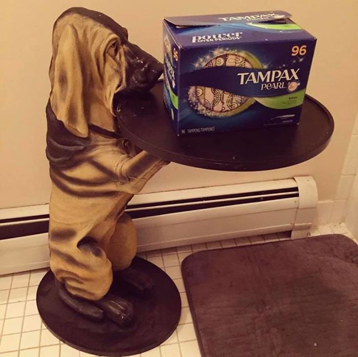 He Lives In The Bathroom And Holds Period Products. He's The Bloodhound