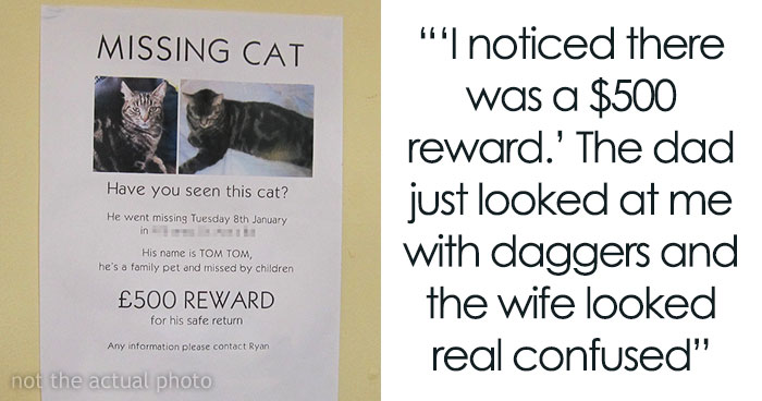 Guy Finds Lost Cat, Brings It To Its Owners, Asks For $500 Promised Reward, Gets Sneered At And Judged