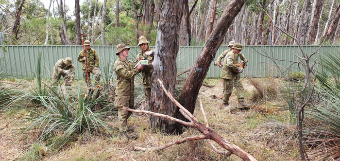 Australian Army Soldiers Spend Their Rest Time Caring For Koalas Affected By The Bushfires