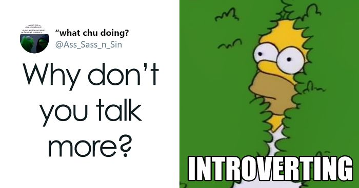 Someone Asks Introverts To Share What Questions Annoy Them The Most, They Respond With 62 Tweets