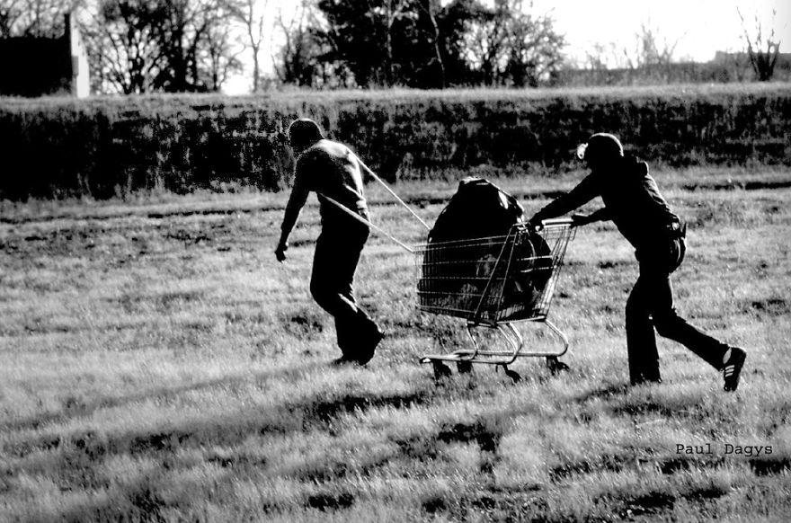 Cart Guys, Memphis