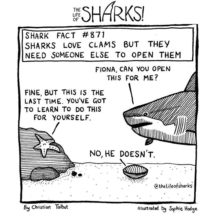 25 Comics We Made That Put Funny Words Into The Mouths Of Big Fish: The Life Of Sharks