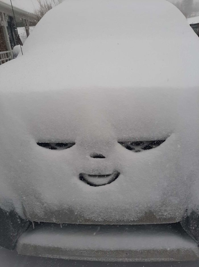 My Car Seems Pretty Happy About The Snowstorm