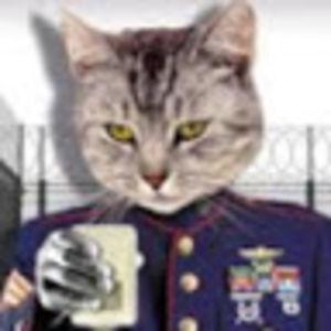 Sgt. Cat