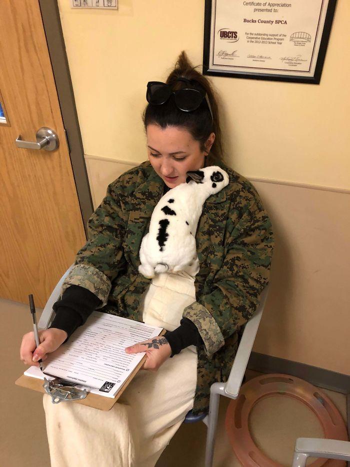 Firmando los papeles de adopción de mi nuevo bebé, Moo