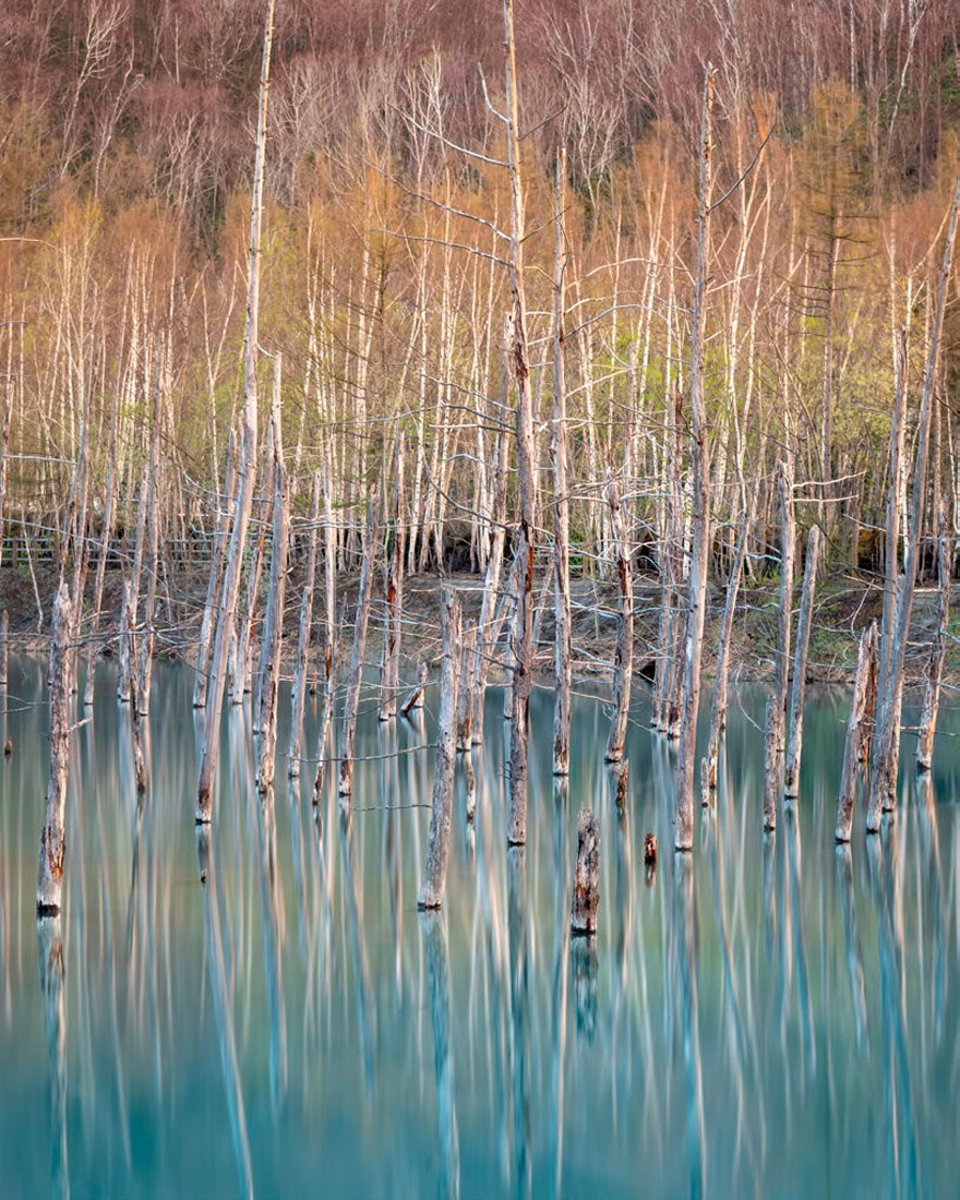 Biei, Hokkaido, Japan By Craig Mcgowan