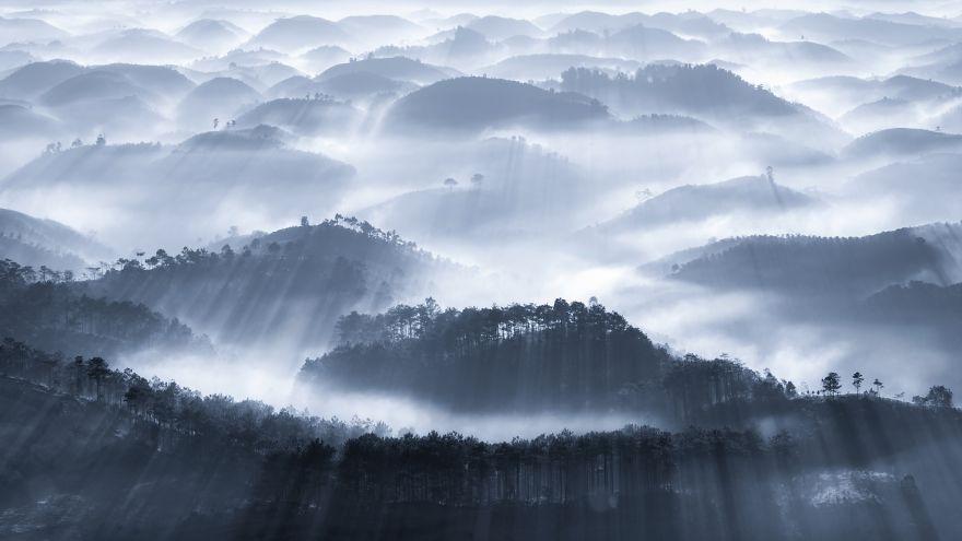 Early Fog