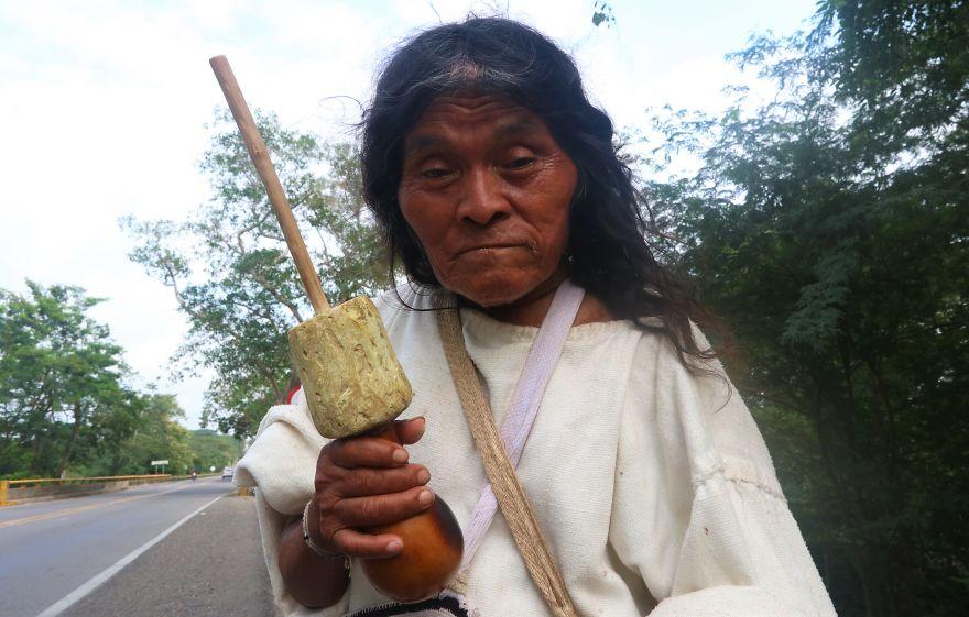 Aboriginal, Palomino