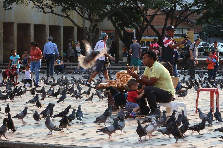Pigeons Squad, Cali