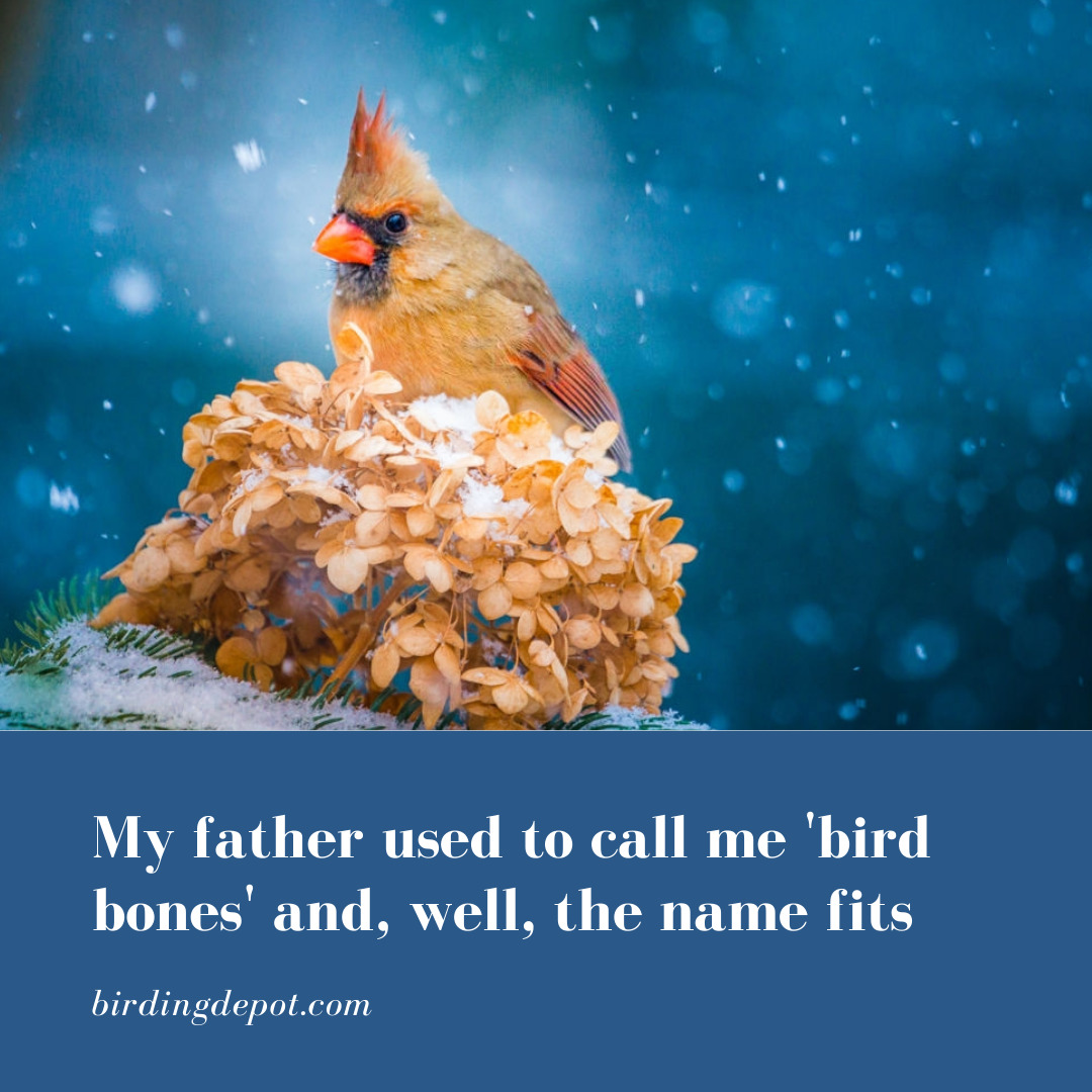 My Father Used To Call Me 'Bird Bones' And, Well, The Name Fits