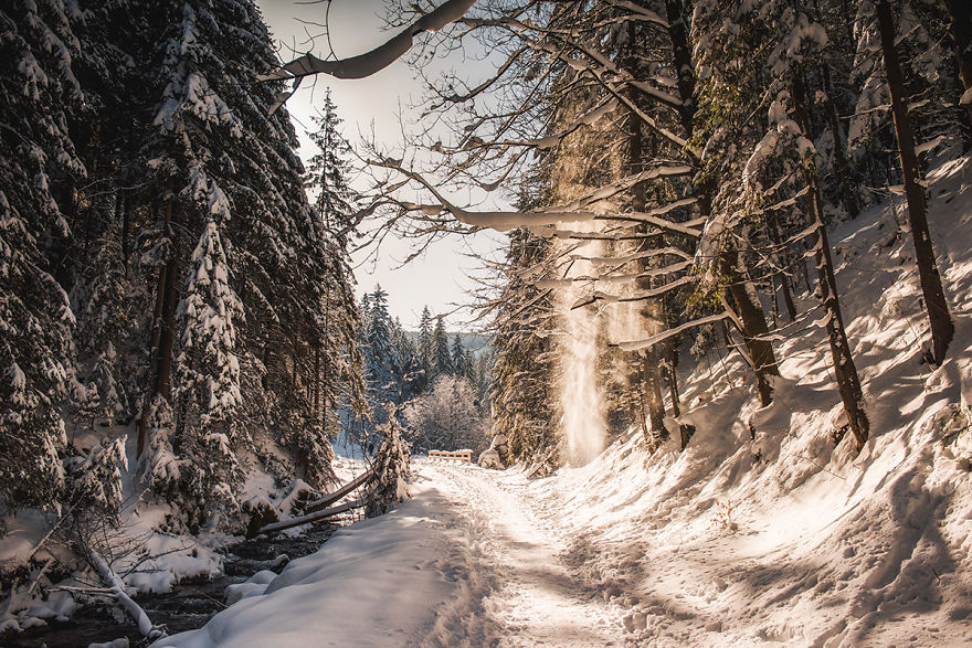 I've Got Lost In The Winter Wonderland And Captured These Photographs (14 Pics)