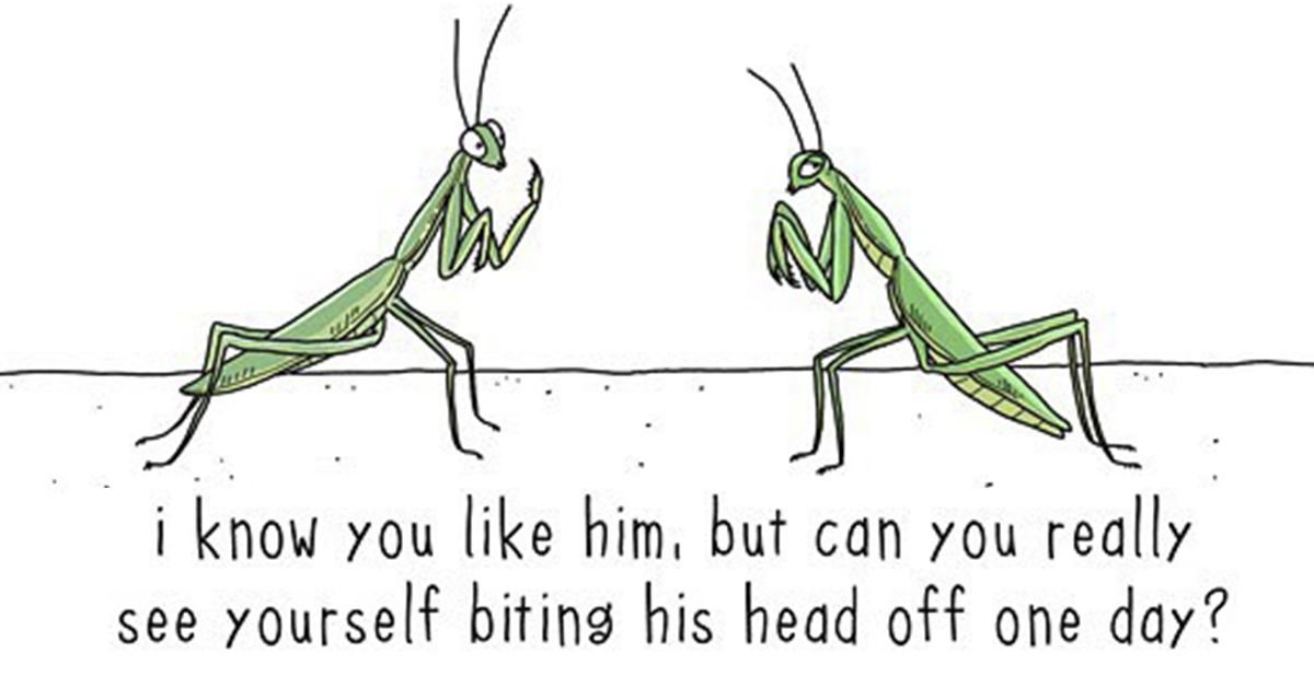 Artist's Illustrations Reveal What Animals Would Say If They Could Speak (96 New Pics)
