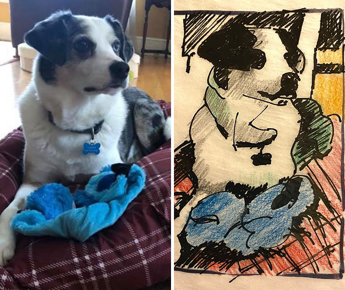 Humane Society Promises To Make A Bad Original Drawing Of Your Pet For A $15 Donation And Here's The Results (35 Pics)