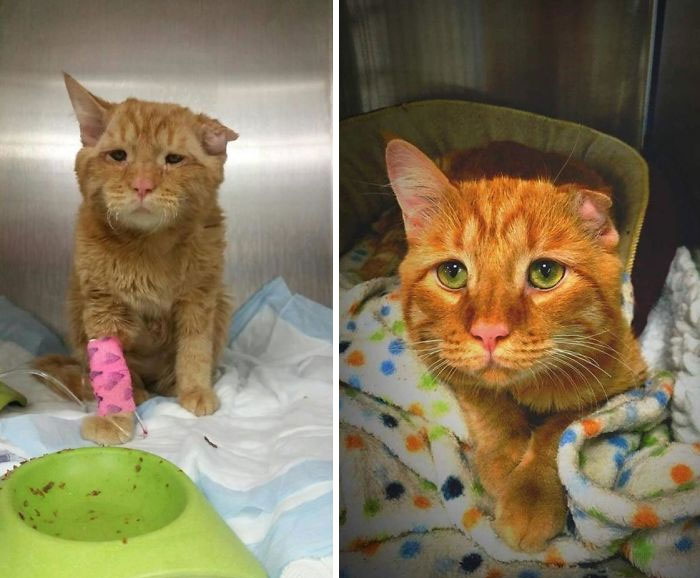 This Is Benben. Before/After Death Row