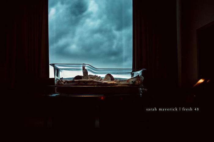 """Honorable Mention: """"On The Day You Were Born"""", Sarah Maverick"""
