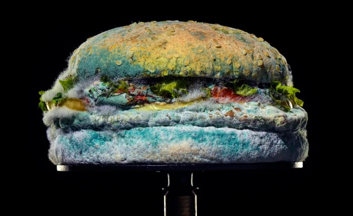 Burger King Releases An Ad Showing How Its New Whopper Will Look In 34 Days