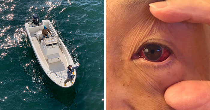 "People Quarantined On The ""Coronavirus Cruise Ship"" Share What It's Really Like (30 Posts)"