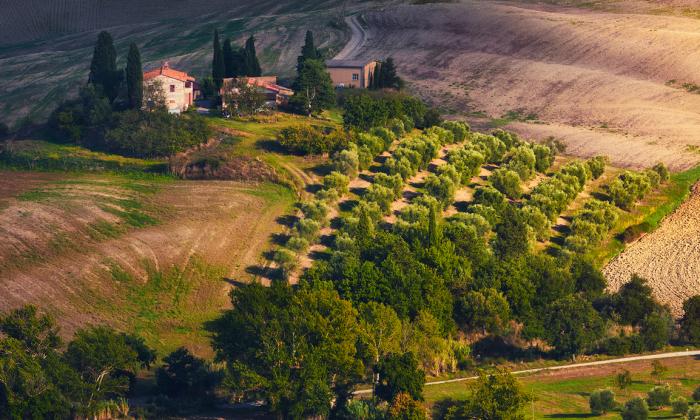 Amazing Undulating Land — Tuscany Through My Eyes