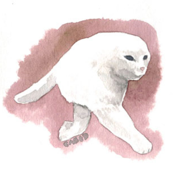 I Made Some Meme Cats Watercolors Because I Love Them