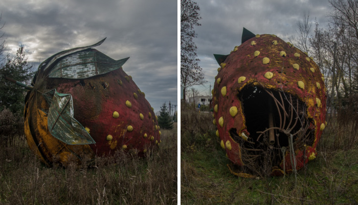 I Found A Large Abandoned Strawberry In Poland